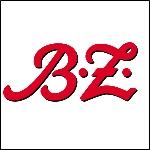 BZ_springer_logo_150