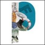 piqd Logo-150