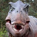Tyrannosaurus Rex-150