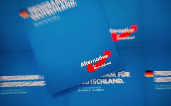 Fortsetzung AfD Parteitag in Rendsburg