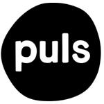 puls-br-150-jpg